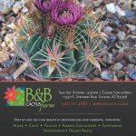 B&B Cactus Direct Mail Advertising