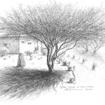 Desert Casita & Palo Verde Tree - Mark Tucci Original Pen & Ink Sketch